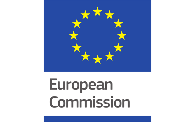 The European Commission's margin of discretion