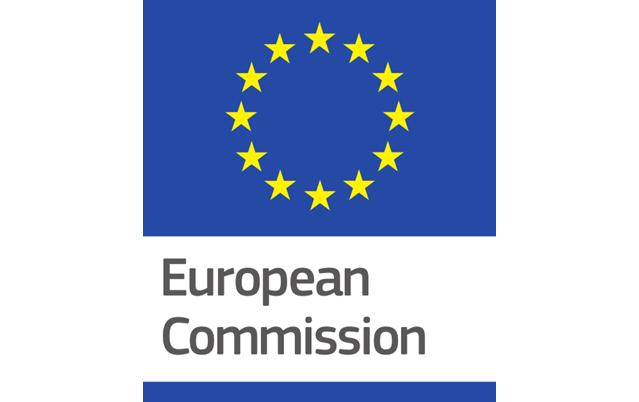 The European Commission's margin of discretion
